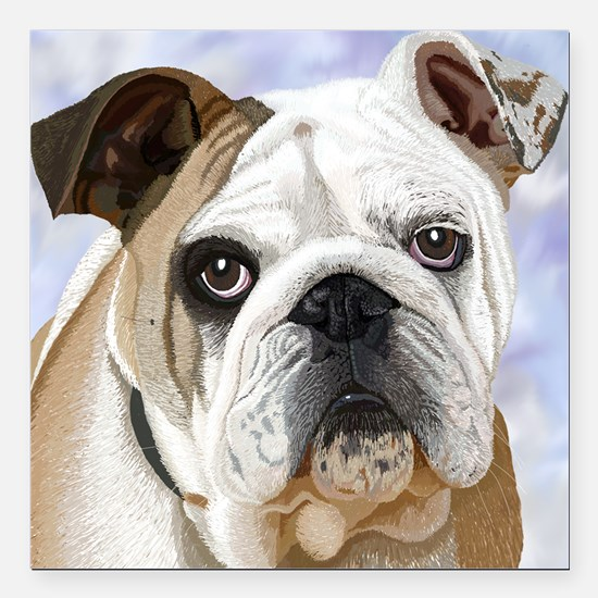 "English Bulldog Square Car Magnet 3"" x 3"""