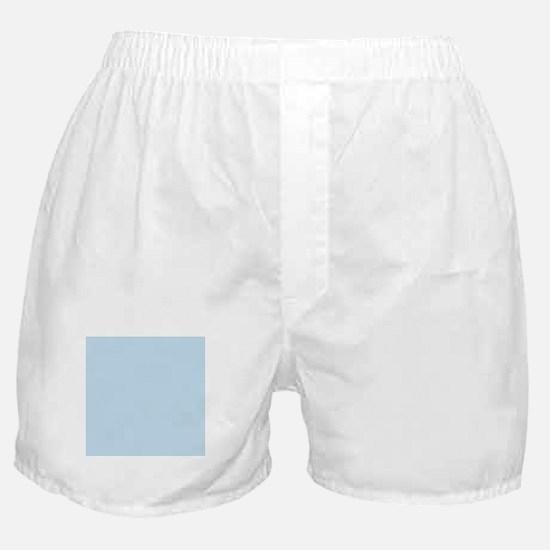 modern chic light blue Boxer Shorts