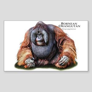 Bornean Orangutan Sticker (Rectangle)