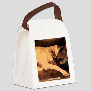 Anatolian, Couch Potato Canvas Lunch Bag