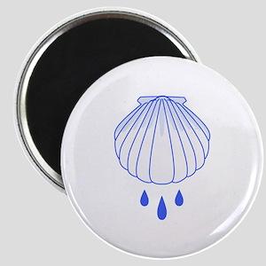 BAPTISM SHELL Magnets