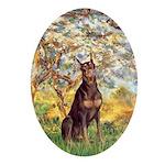 Spring / Doberman Ornament (Oval)