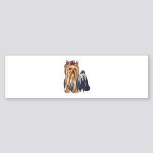 YORKSHIRE TERRIERS Bumper Sticker