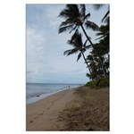 Maui Beach Palms Posters Large Poster