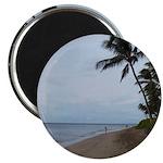 Maui Beach Palms Magnets