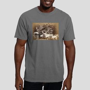Black Hills treasure coach - John Grabill - 1887 M