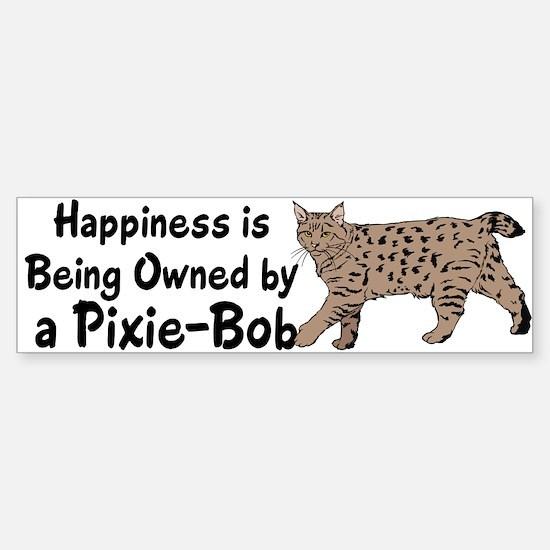 Pixie-Bob (color) Bumper Stickers