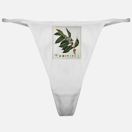 Coffee Botanical Print Classic Thong