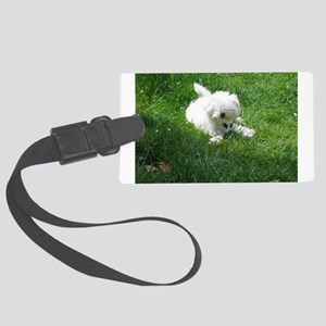 bolognese laying in grass Luggage Tag