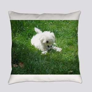 bolognese laying in grass Everyday Pillow