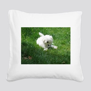 bolognese laying in grass Square Canvas Pillow