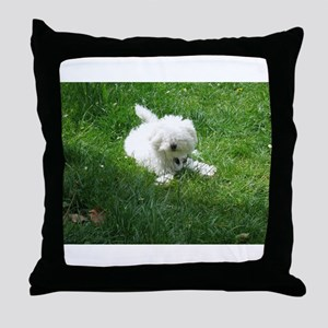 bolognese laying in grass Throw Pillow