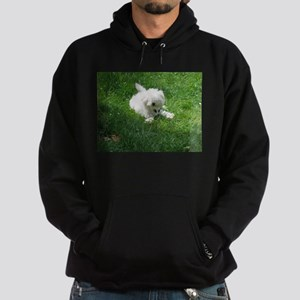 bolognese laying in grass Sweatshirt