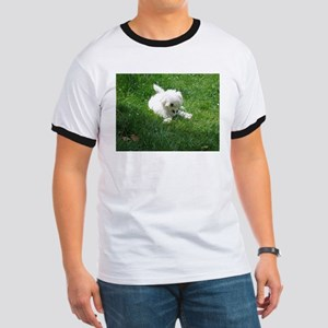 bolognese laying in grass T-Shirt
