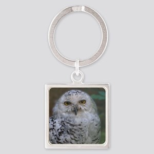 Snowy Owl, Schnee-Eule Square Keychain