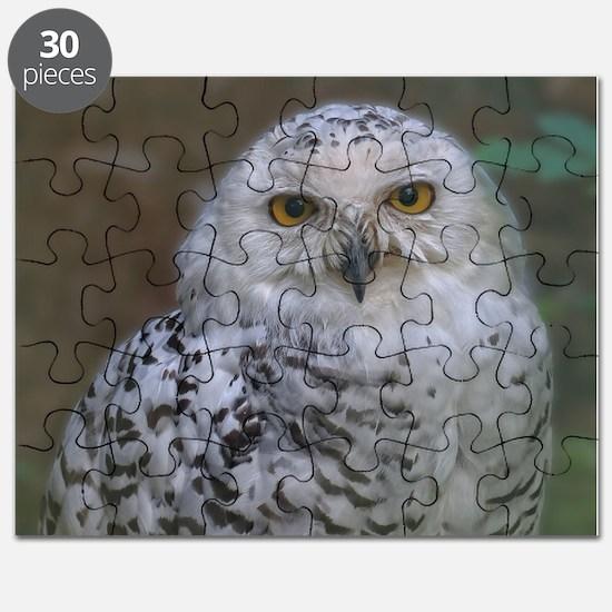 Snowy Owl, Schnee-Eule Puzzle
