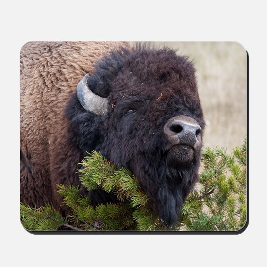 Christmas Bison Mousepad