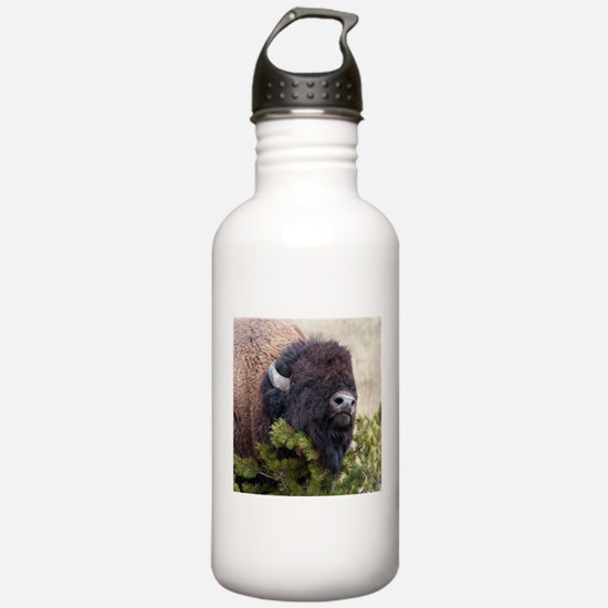 Christmas Bison Water Bottle