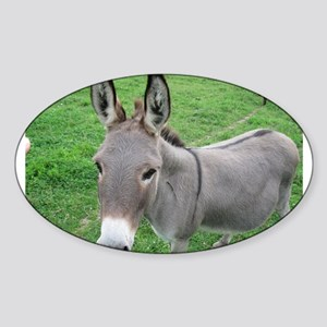 Miniature Donkey Sticker