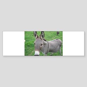 Miniature Donkey Bumper Sticker