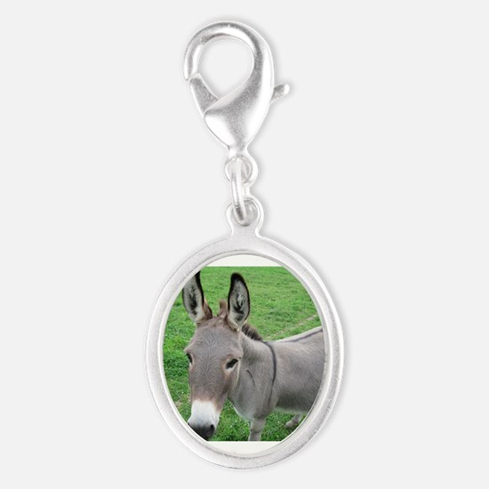 Miniature Donkey Charms