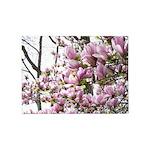 Magnolia Madness 5'x7'area Rug