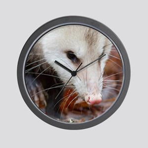 Opossum Wall Clock