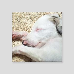 "Sleeping Borzoi Puppy Square Sticker 3"" x 3"""