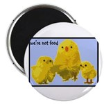 We're Not Food: Chickens Magnet