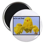 """We're Not Food: Chickens 2.25"""" Magnet (100 pack)"""