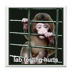 Lab Testing Hurts Tile Coaster