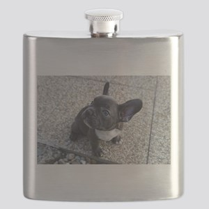 Cute blue Frenchie Flask
