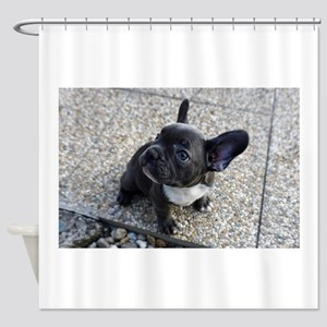 Cute blue Frenchie Shower Curtain