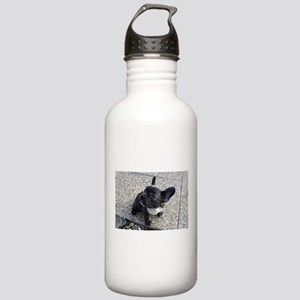 Cute blue Frenchie Stainless Water Bottle 1.0L