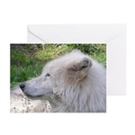 White Wolf Greeting Cards #2 (Pk of 10)