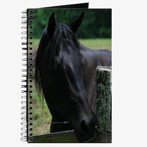 A Black Horse Journal