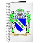 Hollindale Journal