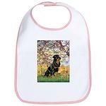 Spring / Rottweiler Bib