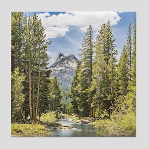 Mountain River Scene Tile Coaster