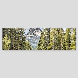 Mountain River Scene Sticker (Bumper)