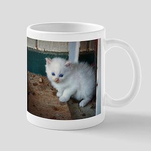 White Kitten Mugs
