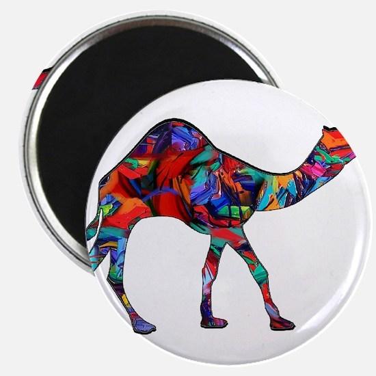 CAMEL VISION Magnets