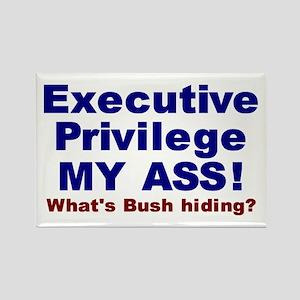 What's Bush Hiding Rectangle Magnet