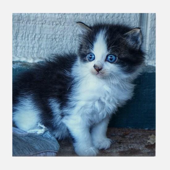Black + White Kitten Tile Coaster
