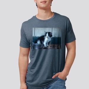 Black + White Kitten T-Shirt