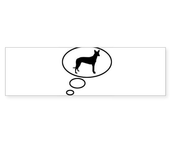 Thinking of pharoah hound bumper bumper bumper sticker