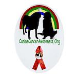 CCA Oval Ornament