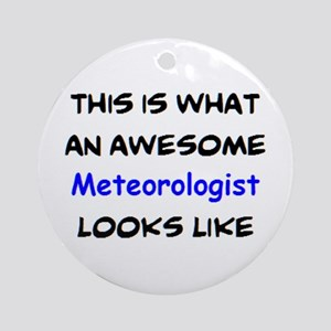 awesome meteorologist Round Ornament