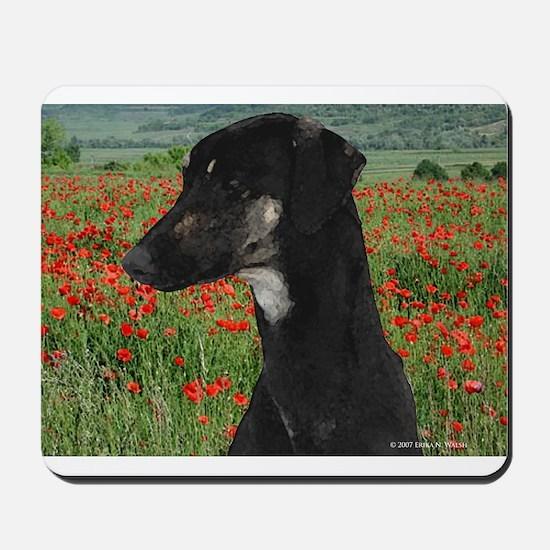 Sloughi in Red Poppy Field Mousepad