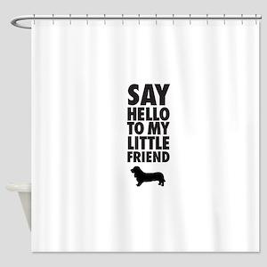 say hellow to my little friend, Basset Hound Showe